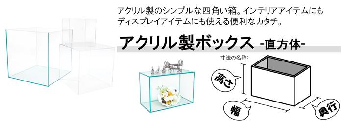 5面体直方体アクリルディスプレイ台【ACRYL WORKS】:カテゴリトップ